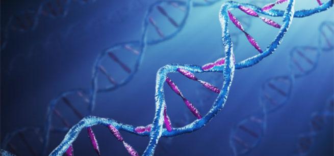 Relazione tra stress e malattie autoimmuni in uno studio pubblicato su JAMA